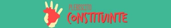 www.plebiscitoconstituinte.org.br